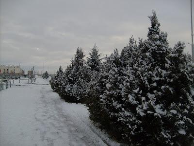 Крещение, в Магасе улицы в снегу