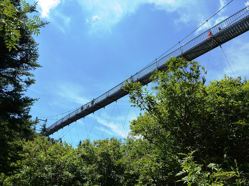 That Hiking trails georgia swinging bridge sorry, that