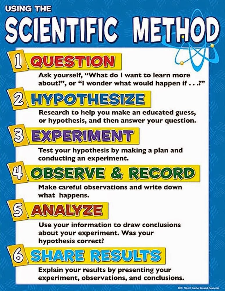 Steps in the Scientific Process