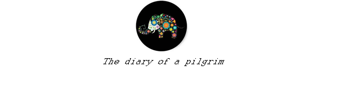 The diary of a pilgrim