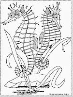 mewarnai gambar kuda laut