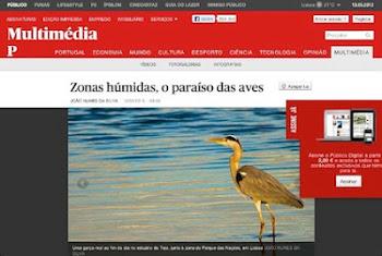 Galeria multimédia sobre Zonas Húmidas no site Jornal PÚBLICO