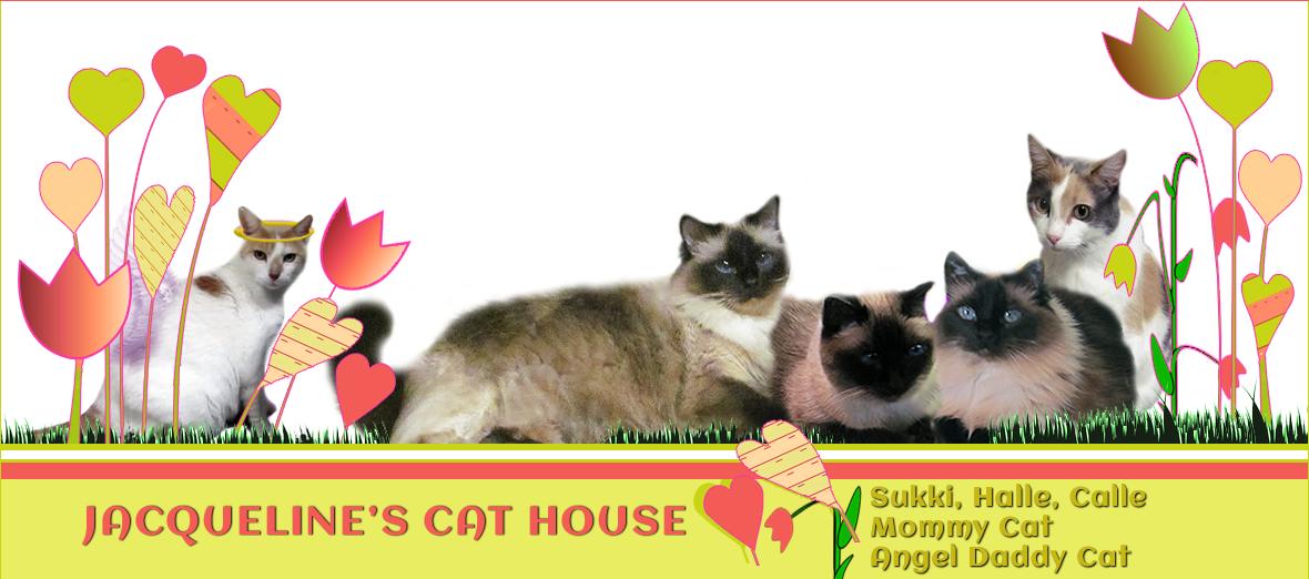 Jacqueline's Cat House