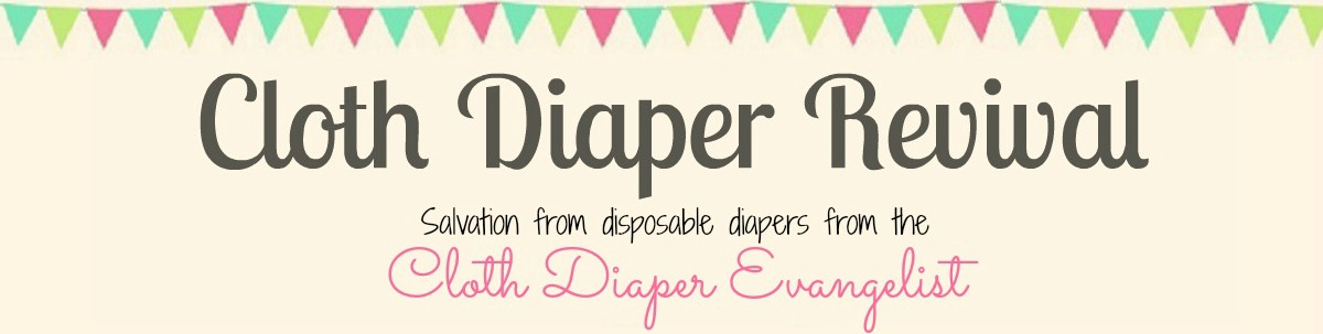 The Cloth Diaper Revival