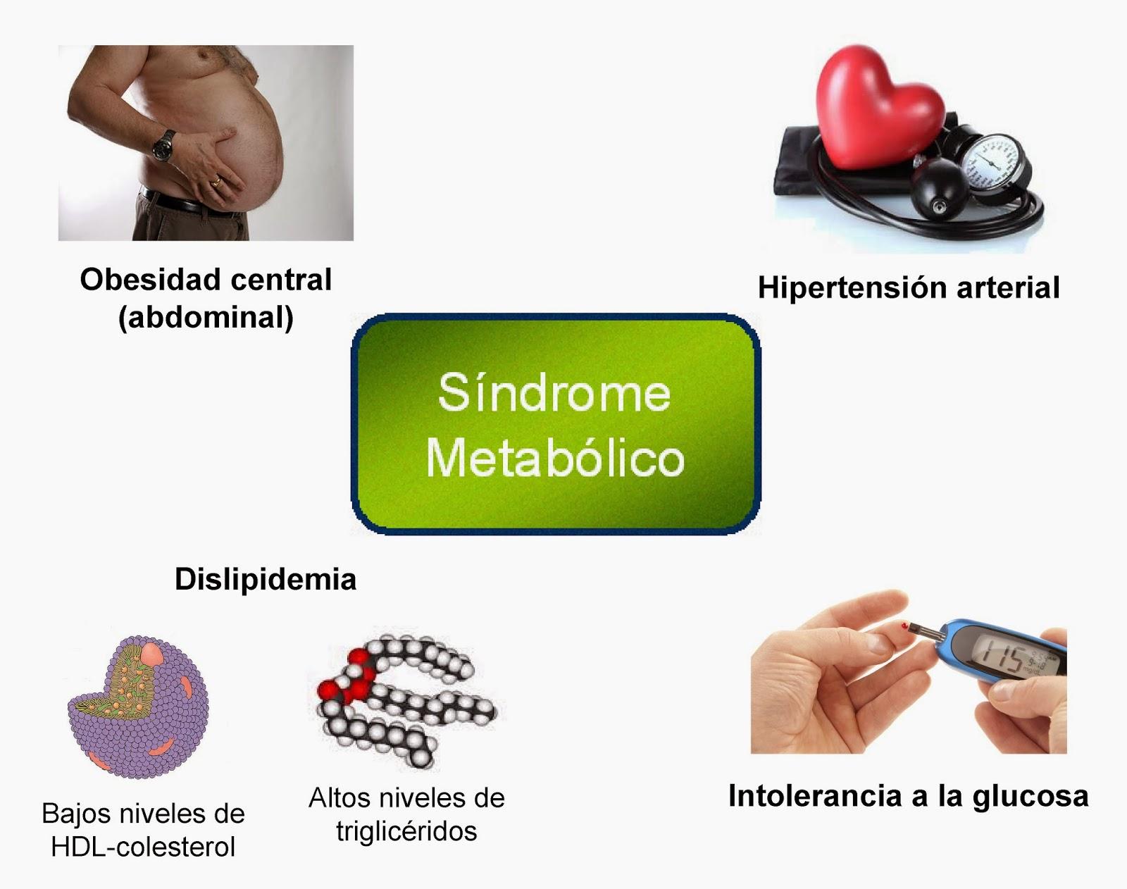 Hormonas : OBESIDAD III. Consecuencias para la salud