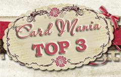 Top 3 17-11-2013