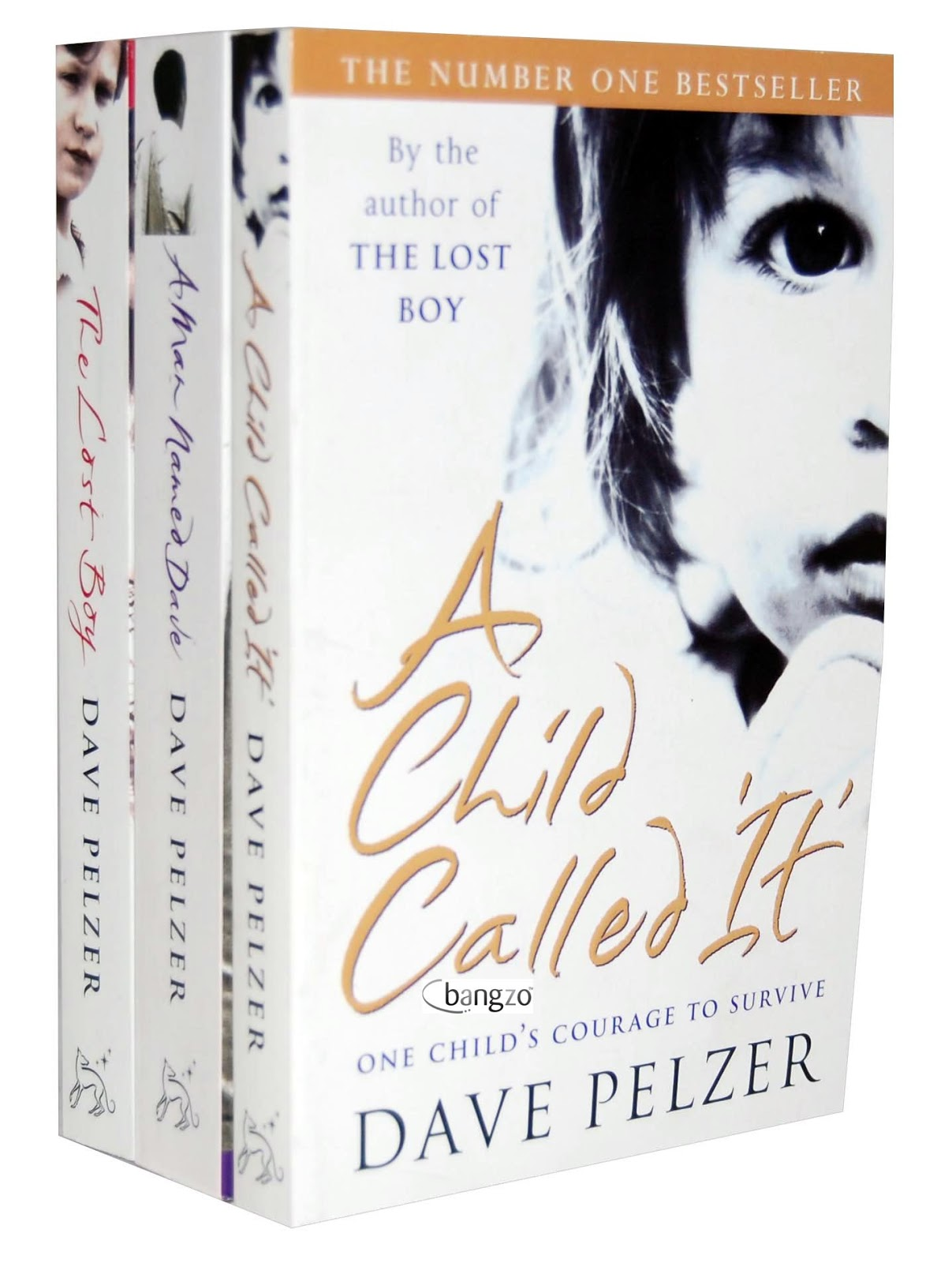 Dave pelzer series a child called it the lost boy a man named dave i