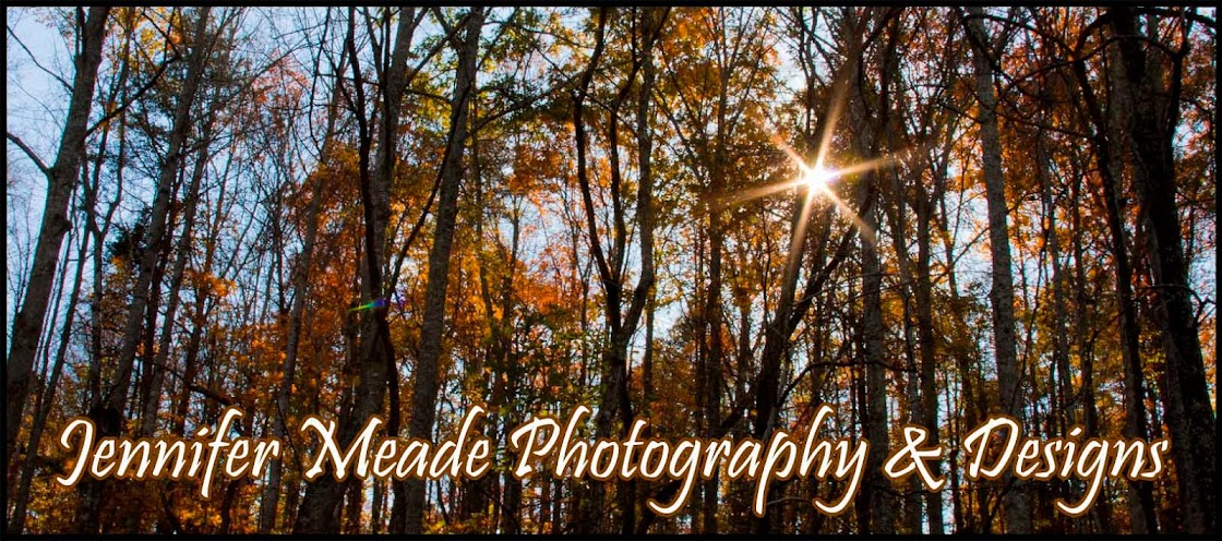 Jennifer Meade Photography & Designs