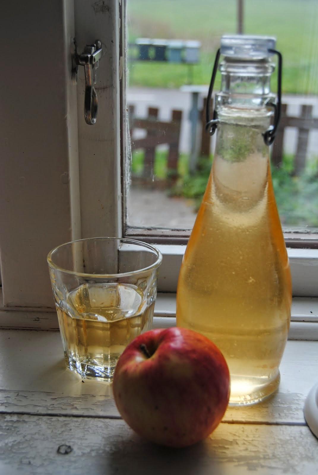 Min tre dagars hemmagjorda äppeldryck