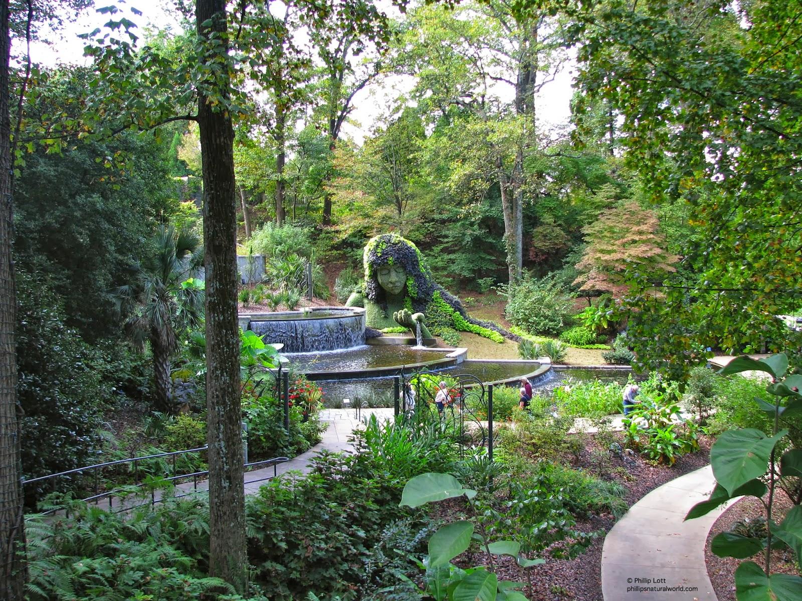 Halloween in the atlanta botanical garden phillip 39 s Atlanta home and garden