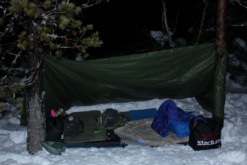 sova ute vinter