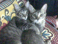 my twins pets :)