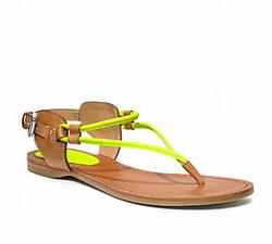 Coach, shoes, closet, home, fashion, style