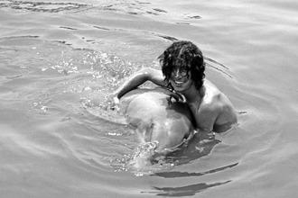 Человек и дельфин секс