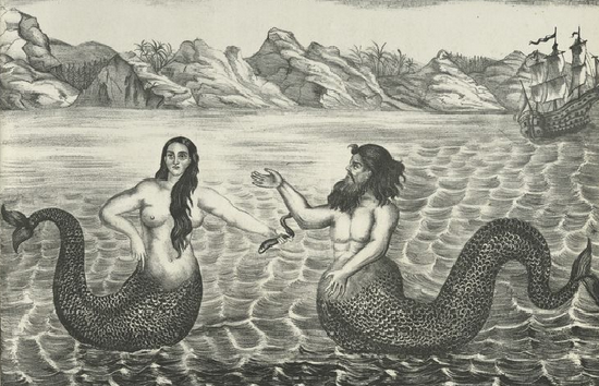 mitos ikan duyung, apakah ikan duyung ada