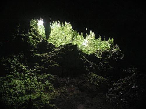 cuevas_de_camuy_parque_cavernas_del_rio_Camuy