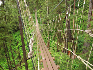 Tongass National Rainforest, Alaska, bridge