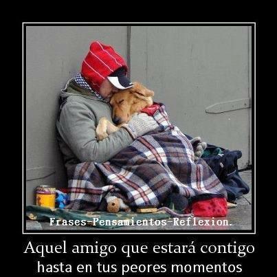 Amorcool Imagenes Con Frases De Amor Tu Mejor Amigo Nunca Te Abandona