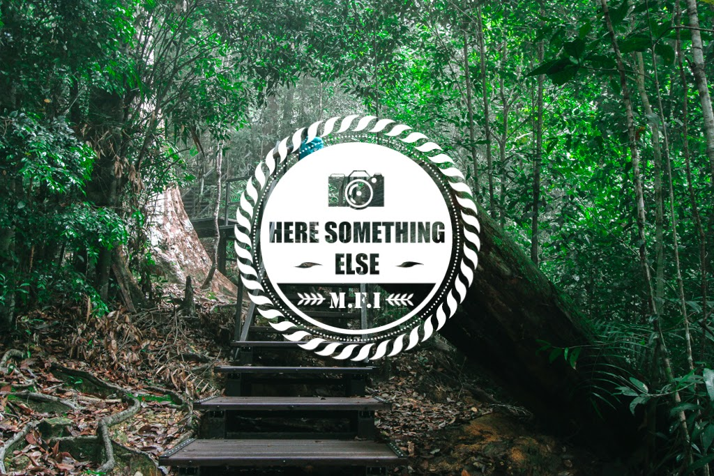 HERE SOMETHING ELSE : THIS IS THE BEGINNING