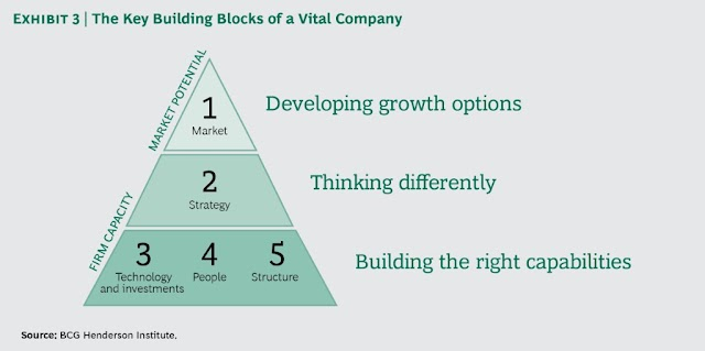 The key building block of a vital company