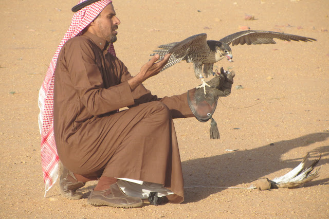Falconry-Saudi-Arabia
