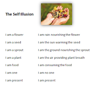 Poem - The Self Illusion