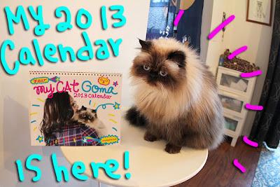 2013-calendar-is-here-01