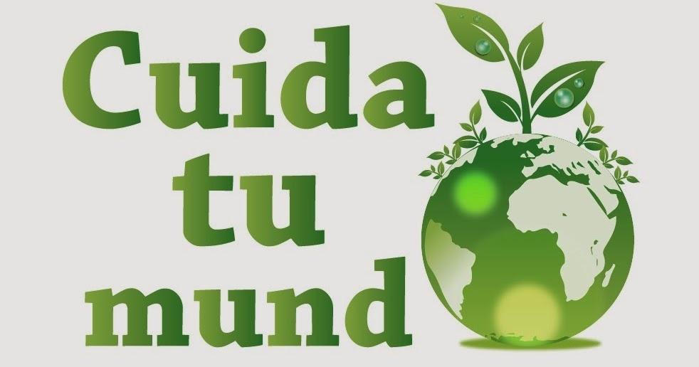 Tips para cuidar el medio ambiente desde tu oficina for Oficina de medio ambiente