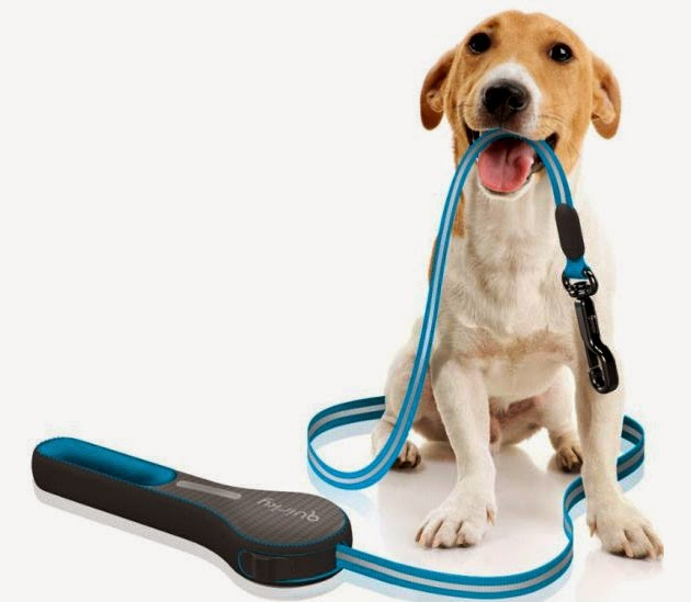 Innovative and Clever Dog Leashes (15) 2