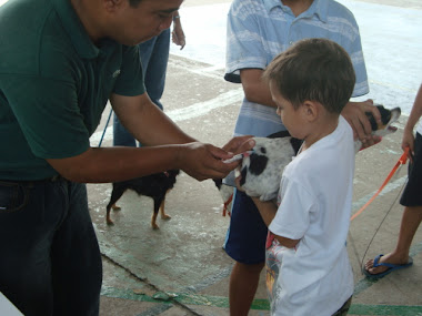Anti-Rabies Vaccination Fortune Village 5