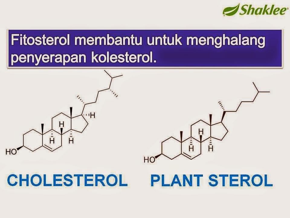 fitosterol, kolesterol, phytocol-st, stroke, sakit jantung, darah tinggi, salur darah