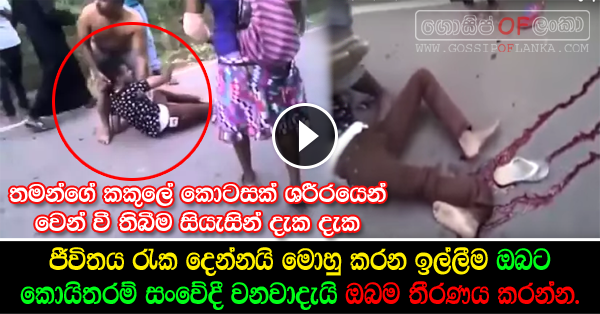 Shocking Accident Caught on Camera (Watch video)