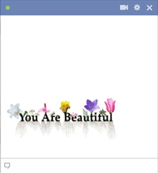 you are beautiful facebook emoticon Emoticon Facebook Terbaru