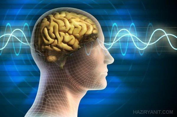 Beynin ters çapa kuralı