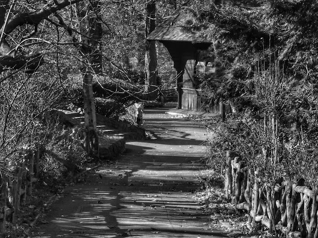 On the Path to Shakespeare's Garden, Central Park, NYC 2013