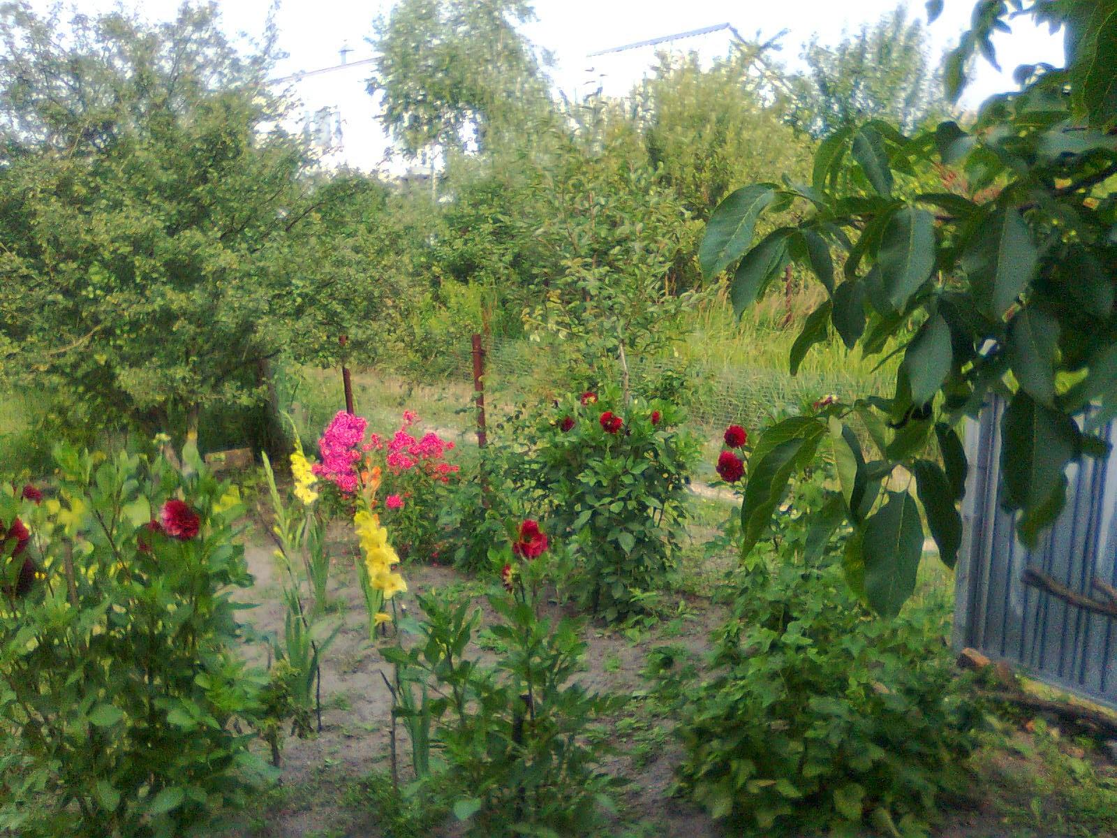 Даты в календаре в июне в беларуси
