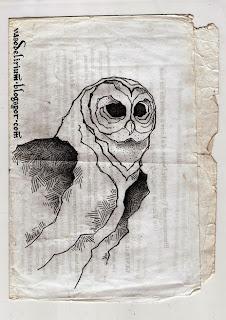 http://vasodelirium.blogspot.gr/2013/11/owl.html