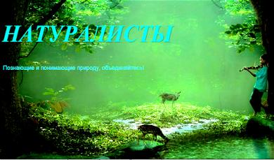 "Блог ""Натуралисты"" Гимназия 6"