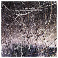 winter garden - budd-bernocchi-guthrie-rare-noise-records