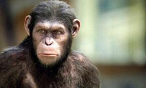 Fotograma de El origen del planeta de los simios