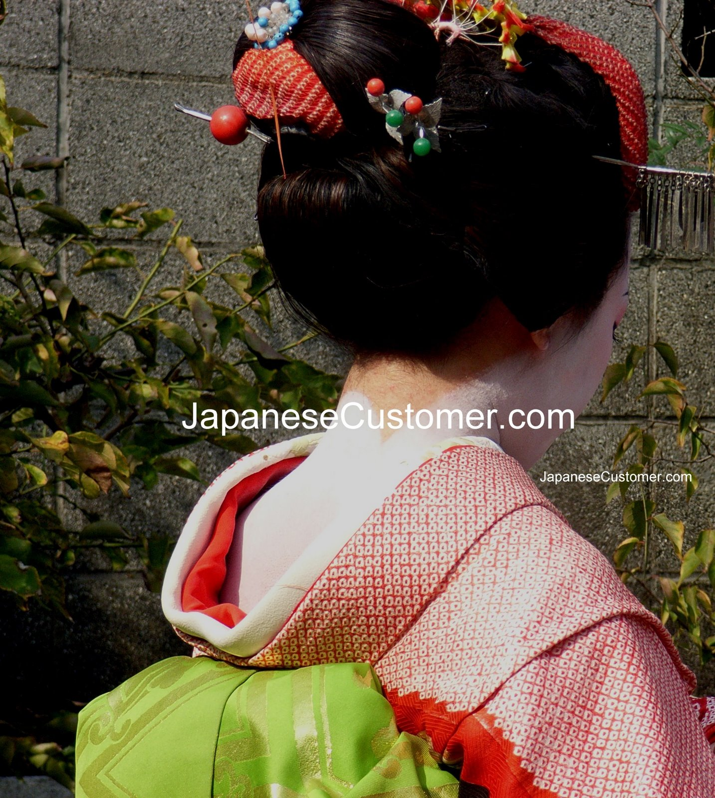 Maiko in Kyoto Copyright Peter Hanami 2014