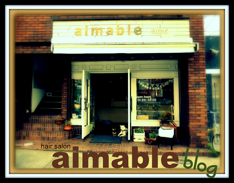 hair salon aimable