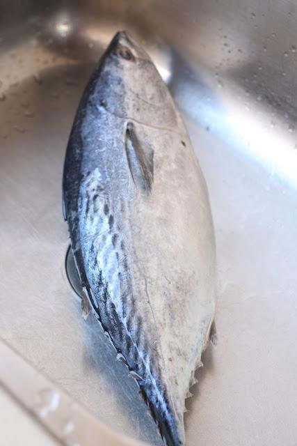 Nasi Lemak Lover Nasi Dagang Dan Gulai Ikan Tongkol