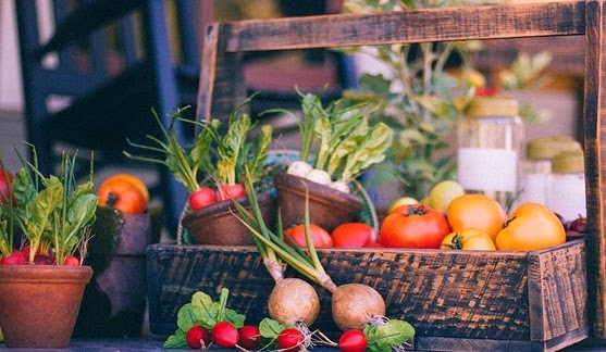 5 consejos para una dieta vegetariana