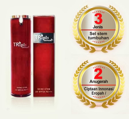 Triple stemcell™ Shine Stem (SS Cream)