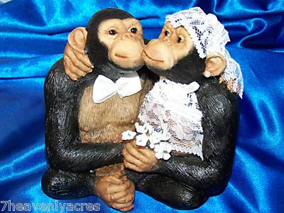 Funny Monkeys Married Pictures 2011 Funny Animals