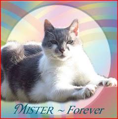 Mister