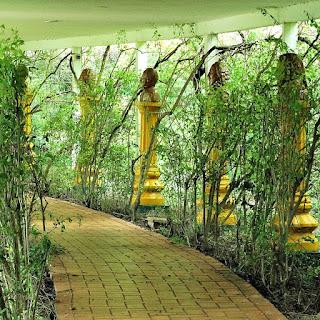 Corredor com bustos de personalidades da ciência e da literatura, em meio à vegetação.