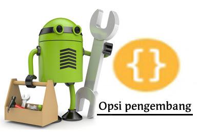 Opsi Pengembang pada Setelan Android