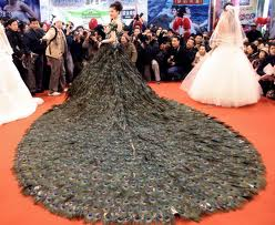 Worlds Longest Wedding Dress Train